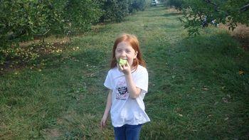Tasting the apples